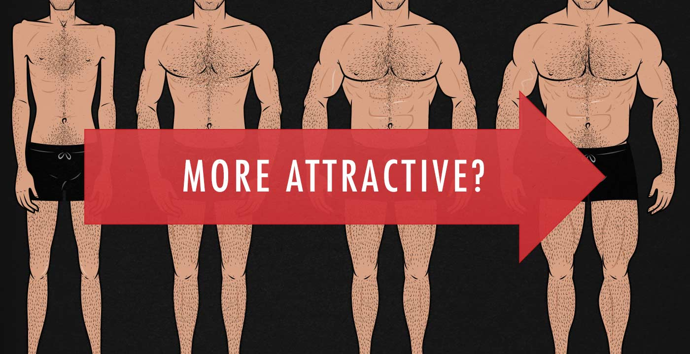 Do women find the most muscular men the most attractive? Is it possible to gain so much muscle that you start to become less attractive?